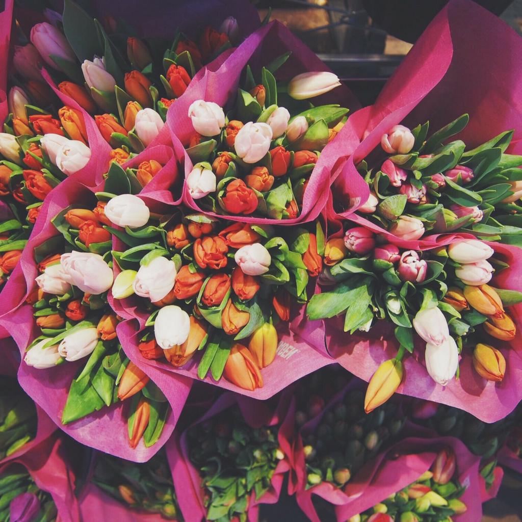 Caroline Ingebrigtsen -Colorful bouquets of tulips