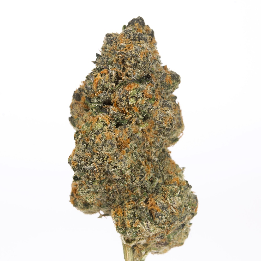 GIRL SCOUT COOKIESBLUE CUT - FROM AIR FIELD SUPPLY CO.