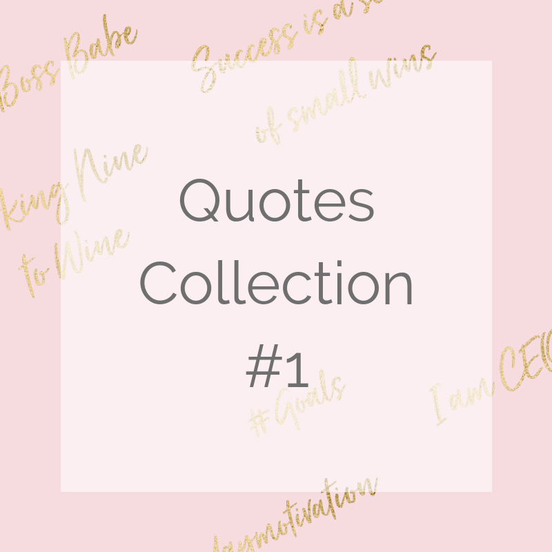 The Stock Collective Collections V2 (2).png