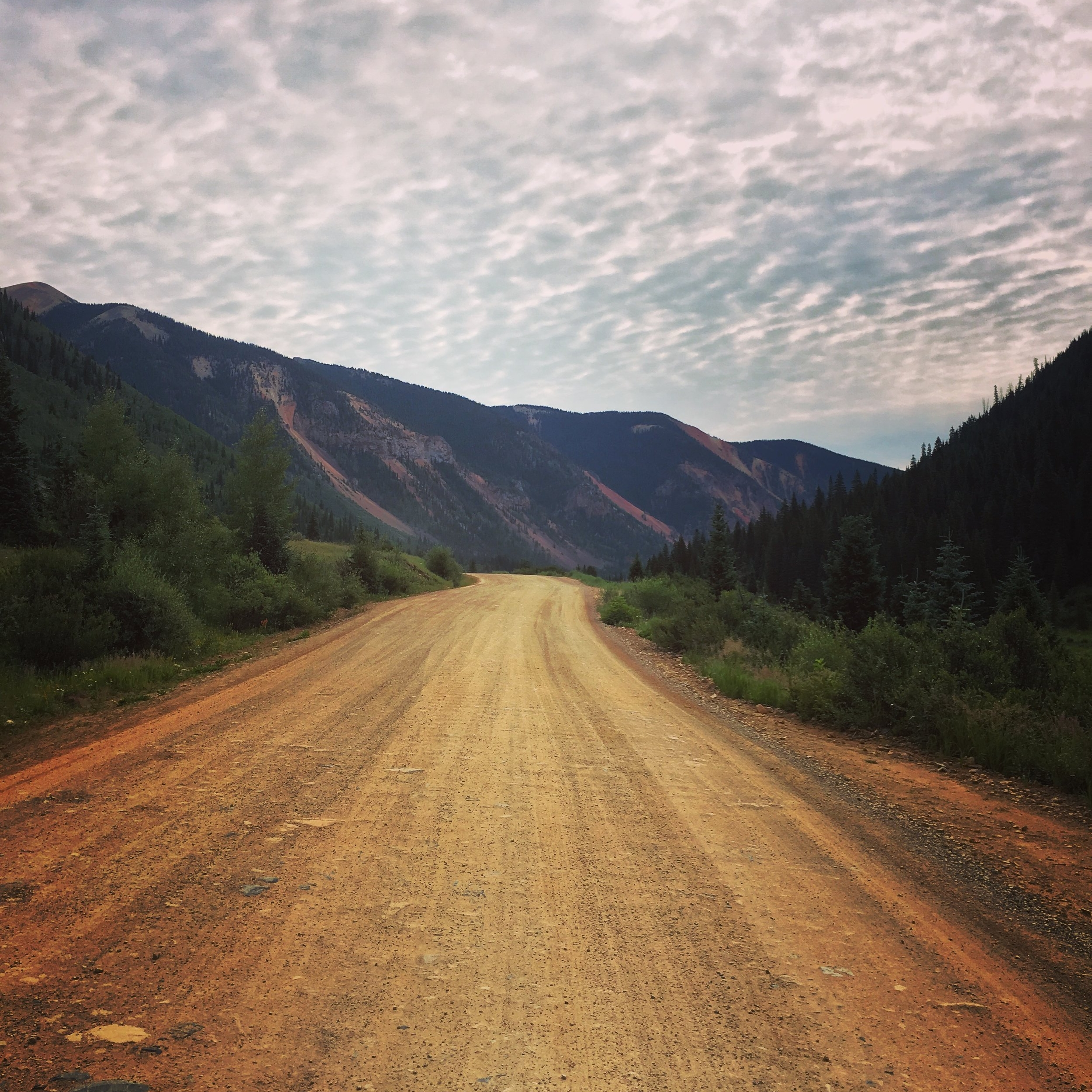 Forest Service Road, San Juan Mountains, Southern Colorado  (photo by Gabrielle Pietrangelo)