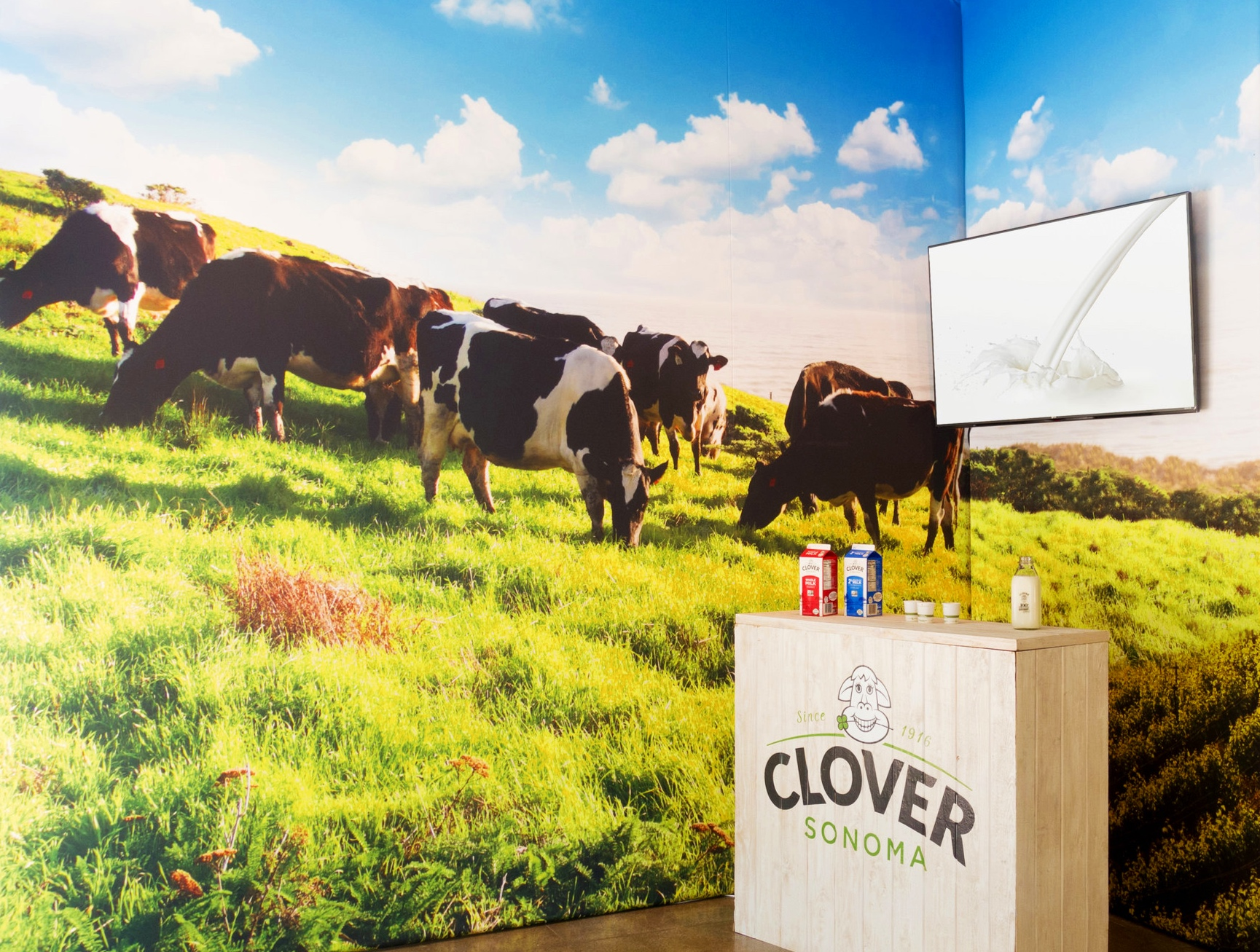 Clover Diary-Popup Store