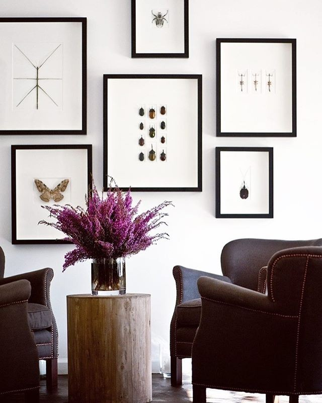 A beautiful wall art collection with a nod to the sprit of Halloween. Created by @seanandersondesign . I love the repeated frame styles and entomology theme, but with unique insect shapes and patterns. Those flowers are the show stoppers! — Designer: @seanandersondesign Photographer: @jay_adkins Source: @seanandersondesign — #seanandersondesign