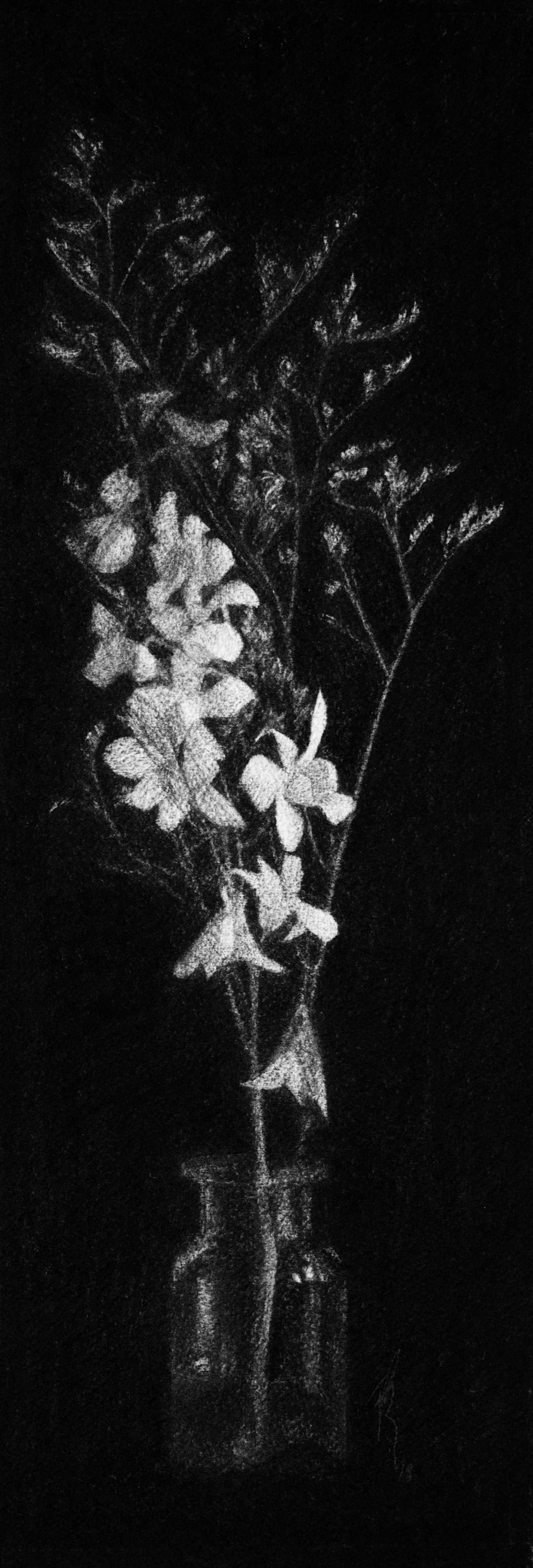 "Orchids I    Charcoal on paper 2018 37cm x 12cm  Sold. Exhibited at Art Porters Gallery ""Flower Flights"" solo exhibition.  past series:  Flower Flights"