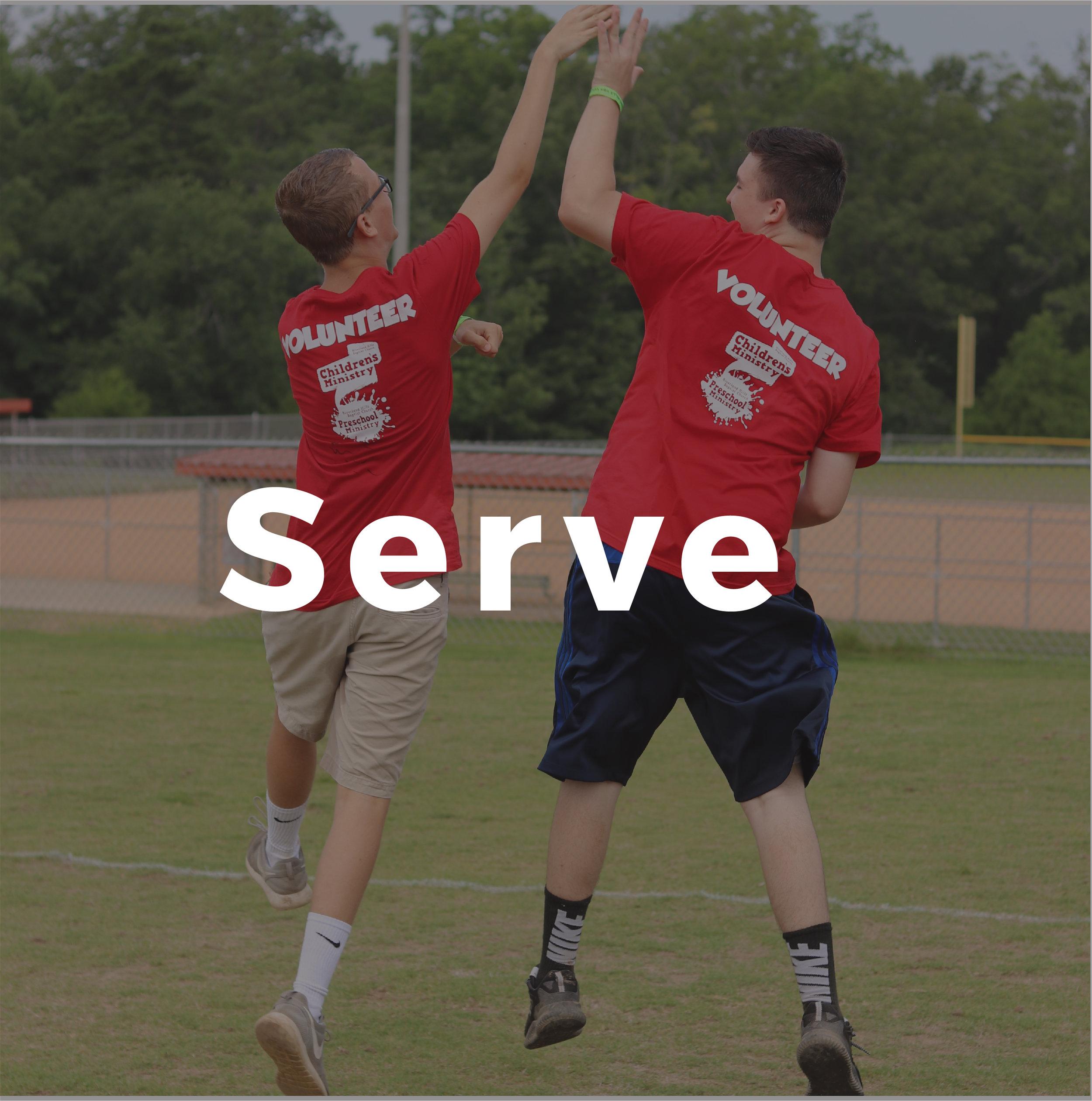 serve@4x-100.jpg