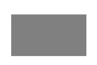 VISA_grey 2.png