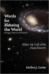 Words for Blessing the World resonates with traditional Jewish liturgy even as it observes the world through a distinctly modern lens. Words for Blessing the World deals with the theological, the political, and the personal and is presented in both Hebrew and English, anchoring the collection deep within the Jewish tradition. $10.00