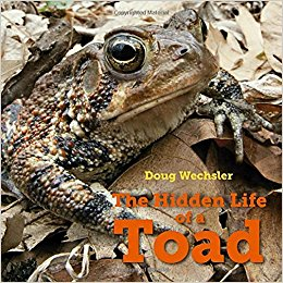 The Hidden Life of a Toad, a stunning nonfiction book photographed in Carpenters Woods and the Wissahickon. $17.99