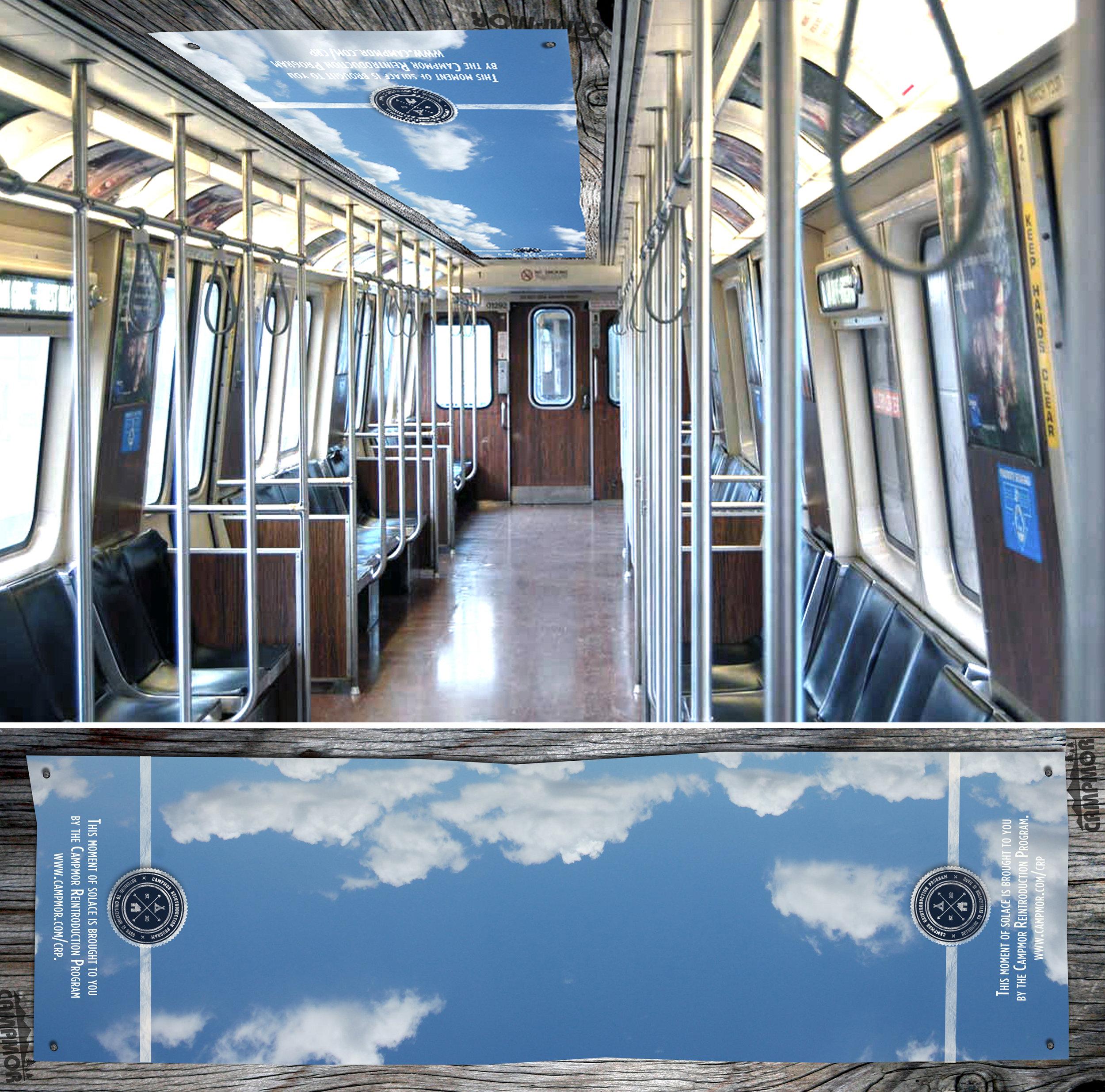 Subway Celing.jpg