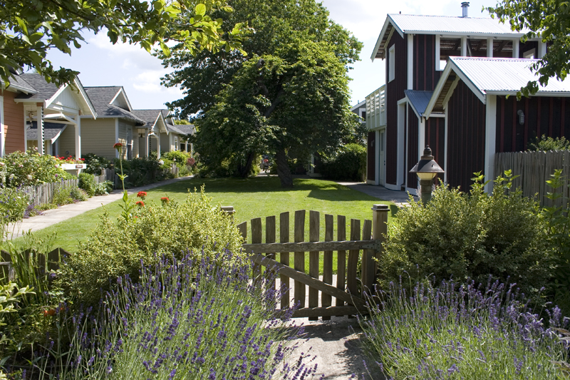 1 and 1/2-storey homes and a common house with shared facilities cluster around a communal greenspace at   Third Street Cottages   at Whidbey Island, Washington