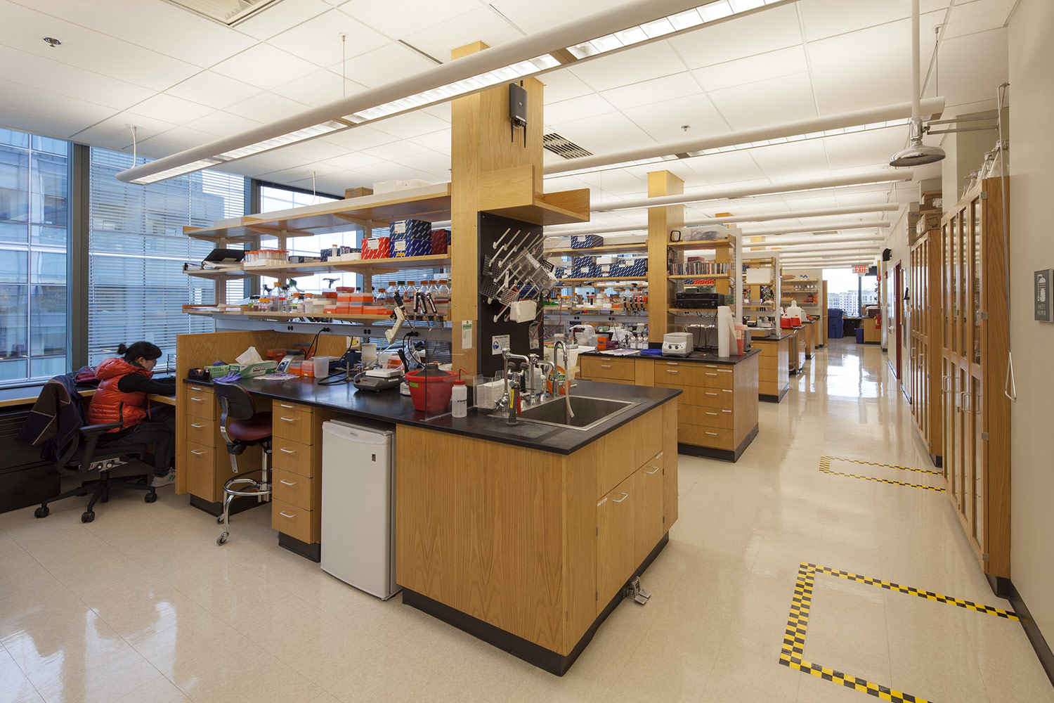 HMS, Microbiology and Immunobiology Labs