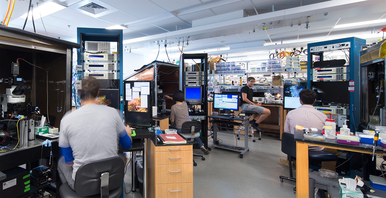 HMS, Sabatini Neurobiology Lab