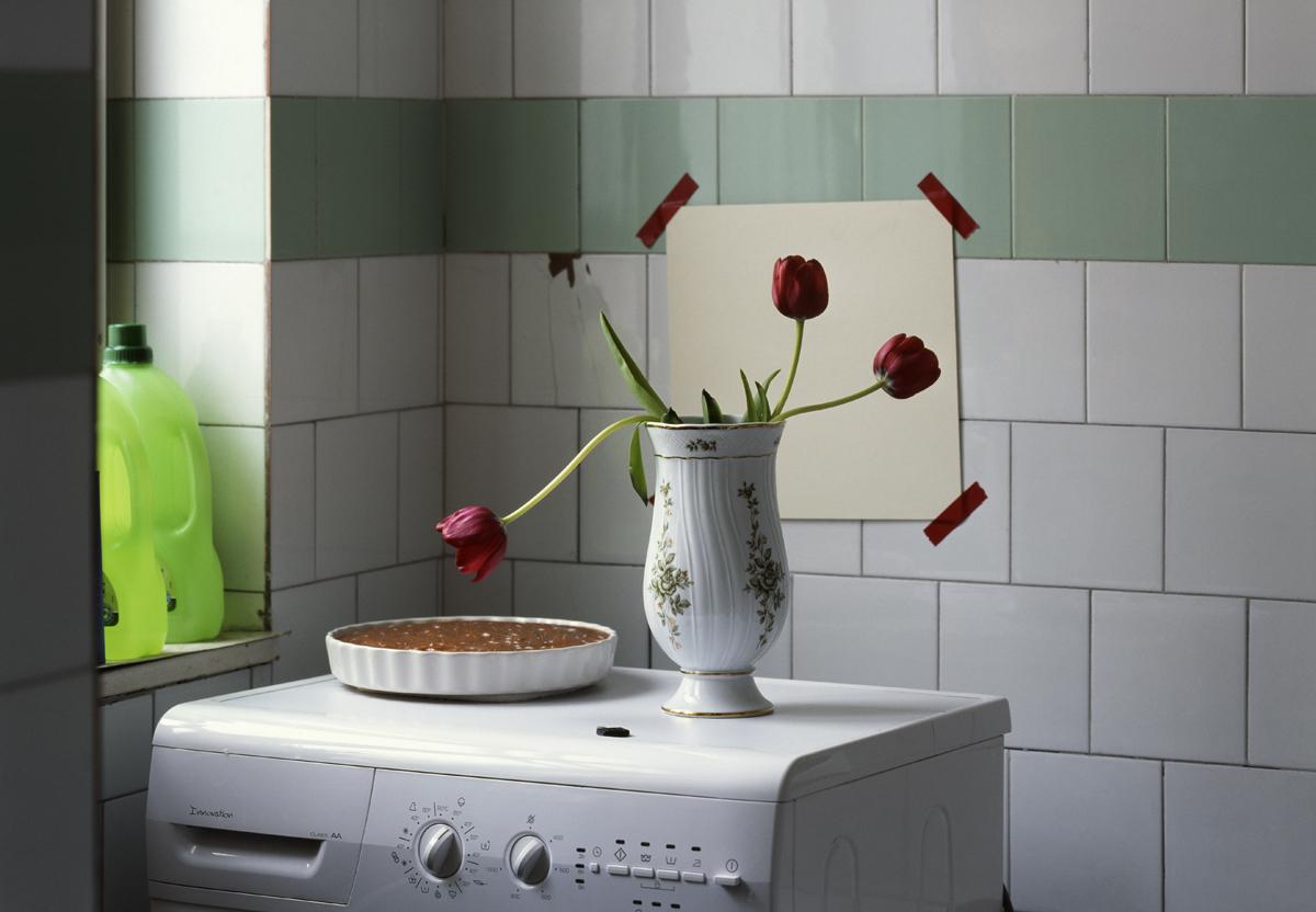 Three tulips and a cake in the bathroom 2009, Epson fine art print, 50 x 69 cm Ed. of 5 + 3 AP