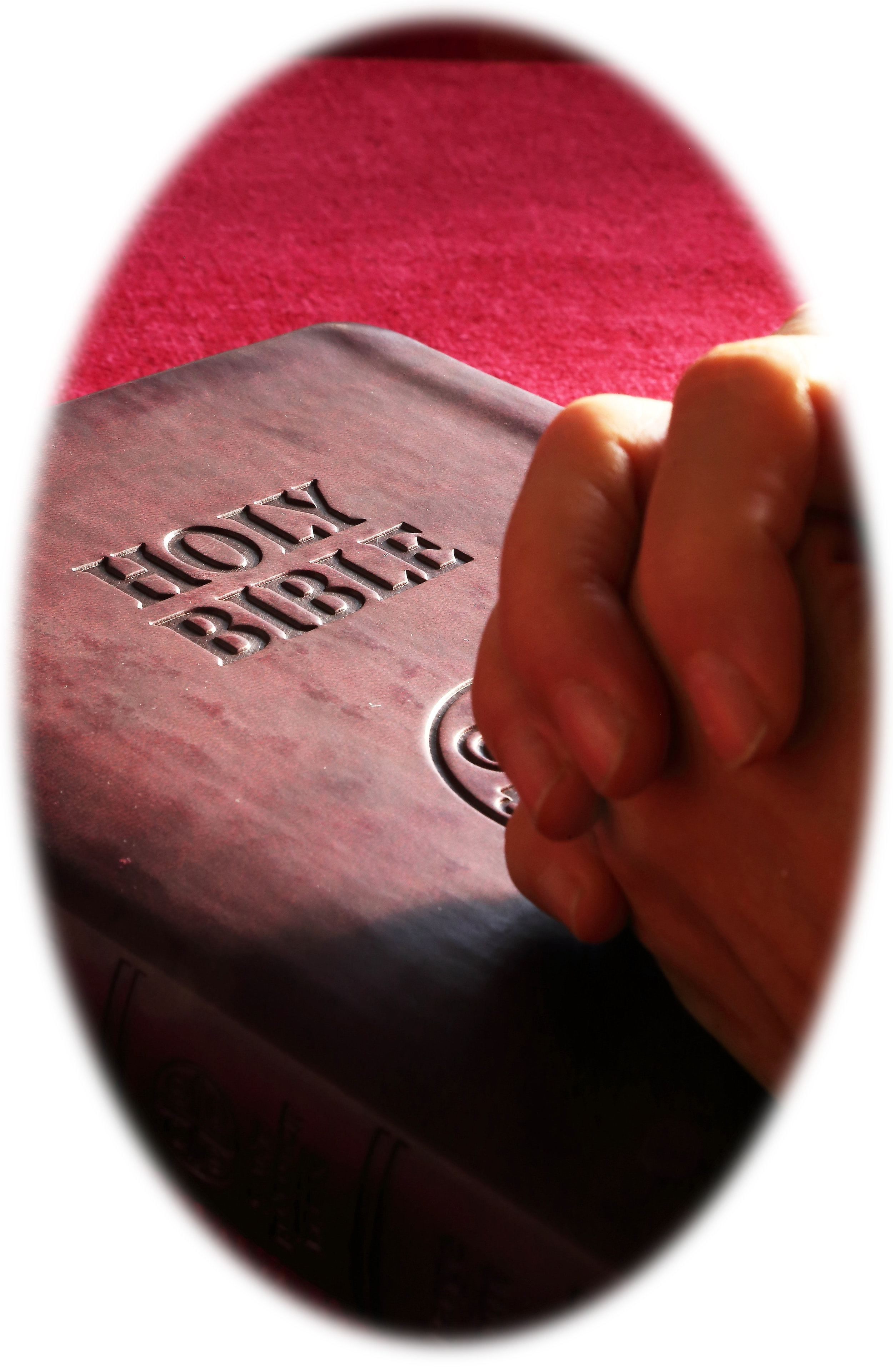 belief-bible-book-267559.jpg