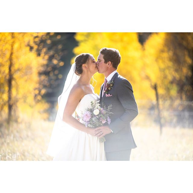 Holy Cow! The fall colors this weekend were on point. The good looking couple didn't hurt either!  #wildernesswedding #fallwedding #outdoorwedding #durangoweddingphotographer #rockymountainbride