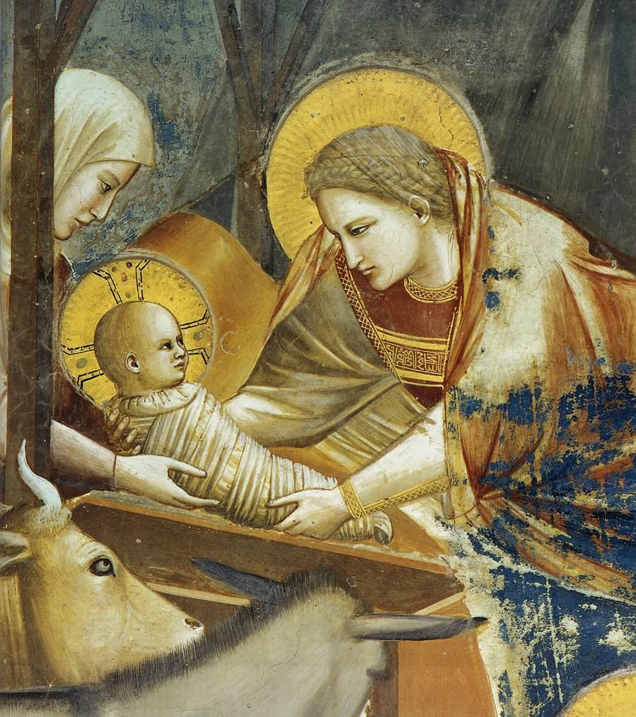 Giotto Arena Chapel - Nativity ob1.jpg