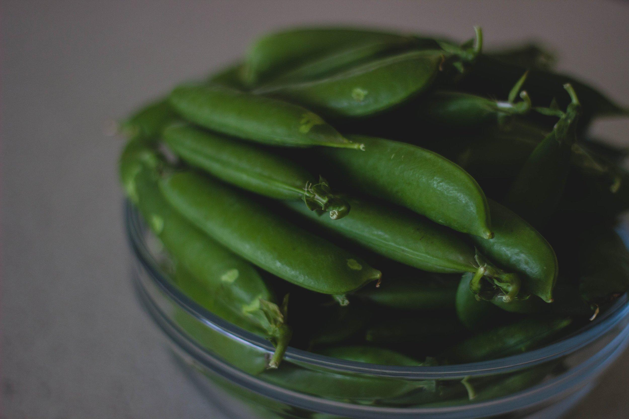 109 beans-bowl-close-up-185473.jpg