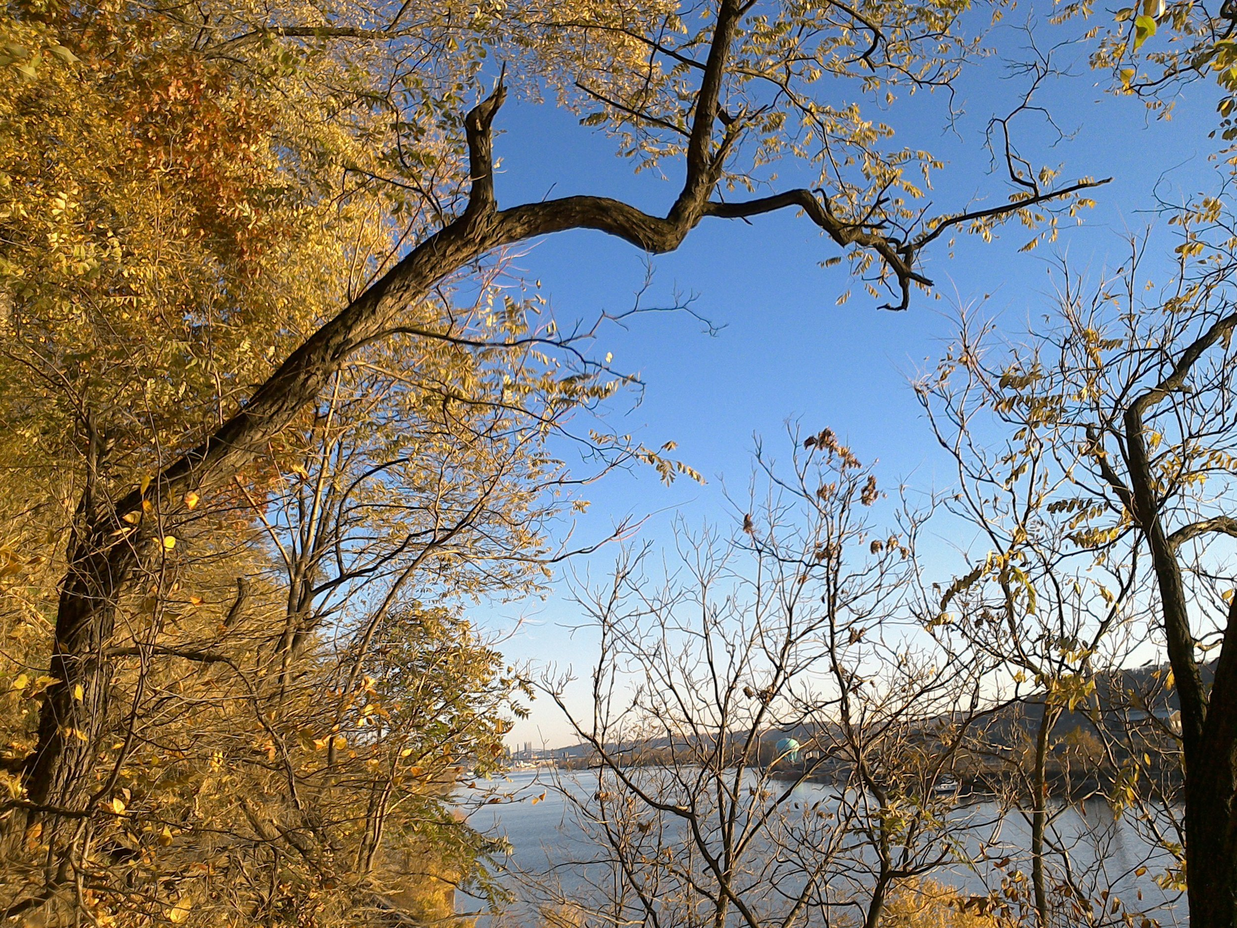 104 OB5 ohio river near Pittsburgh showing much still undeveloped forest public domain.jpg