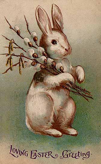 104 EB1 Easter_Bunny_Postcard_1907.jpg