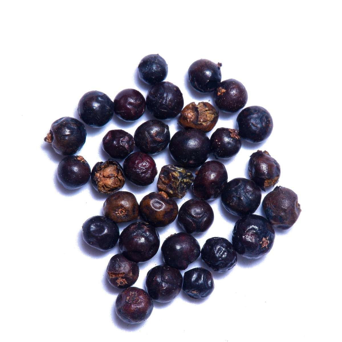 large_square_Juniper_Berries__close.jpg