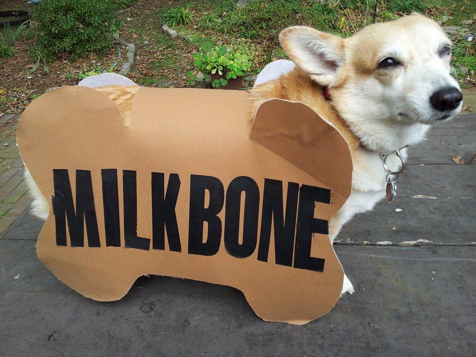 Lois Smith-Nikki The Milkbone.jpg