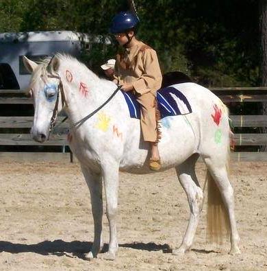 Delia-Hager-Boscana---Painted-Pony.jpg