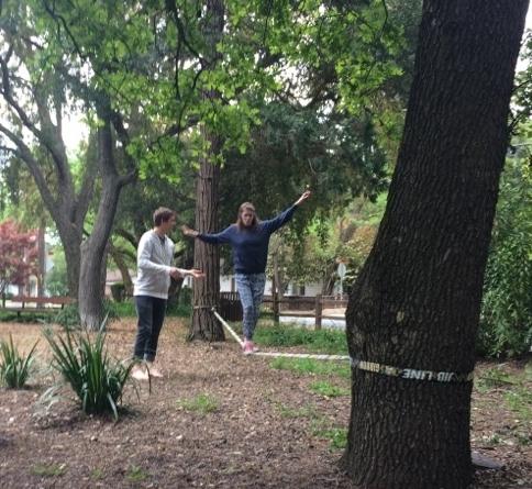 Slacklining in Leigh Creekside Park