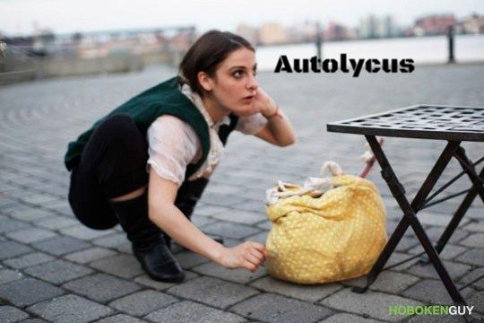Autolycus hiding.jpg