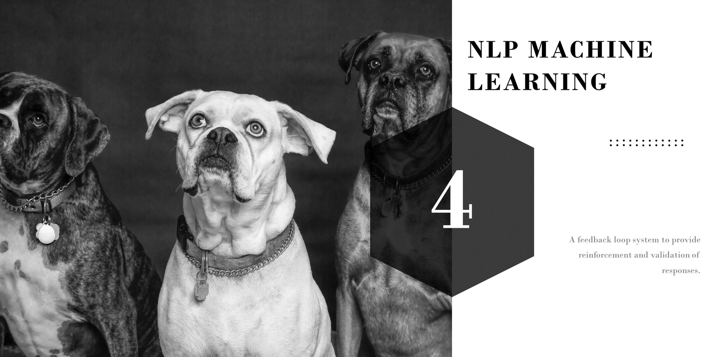 NLP Presentation5.png