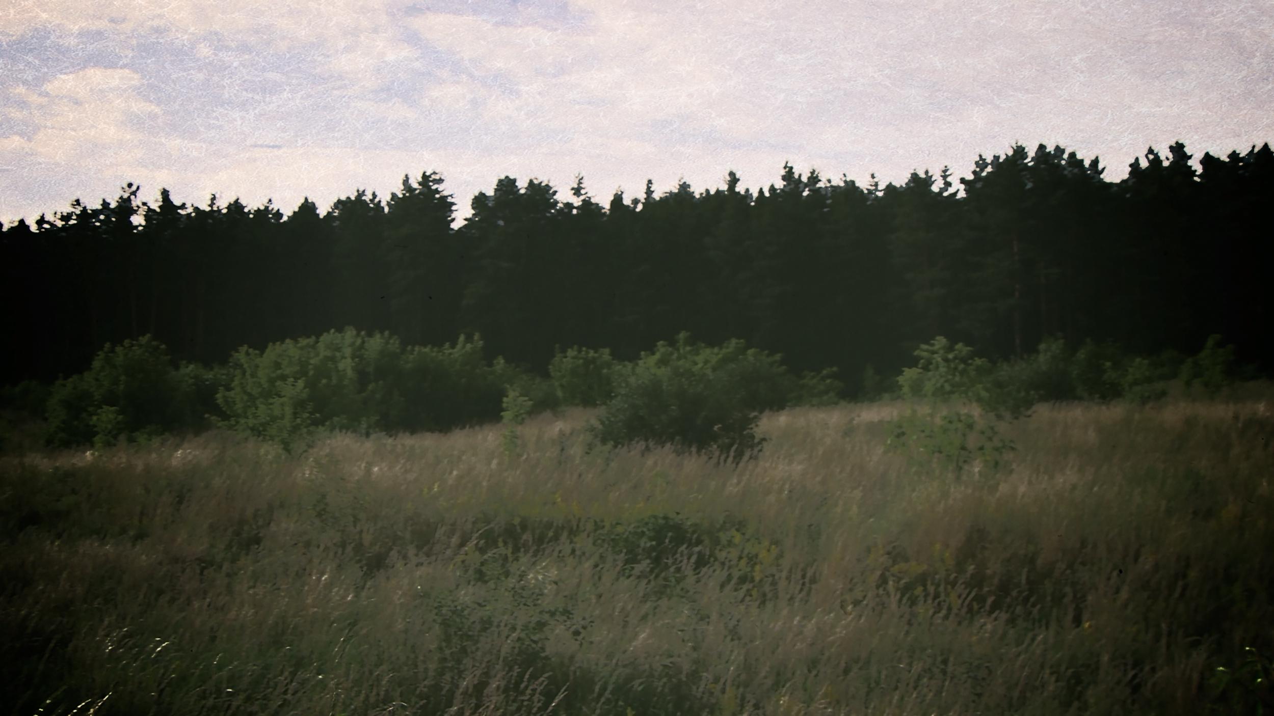 Cemetery in Kozin_r4 (0-01-09-14).jpg