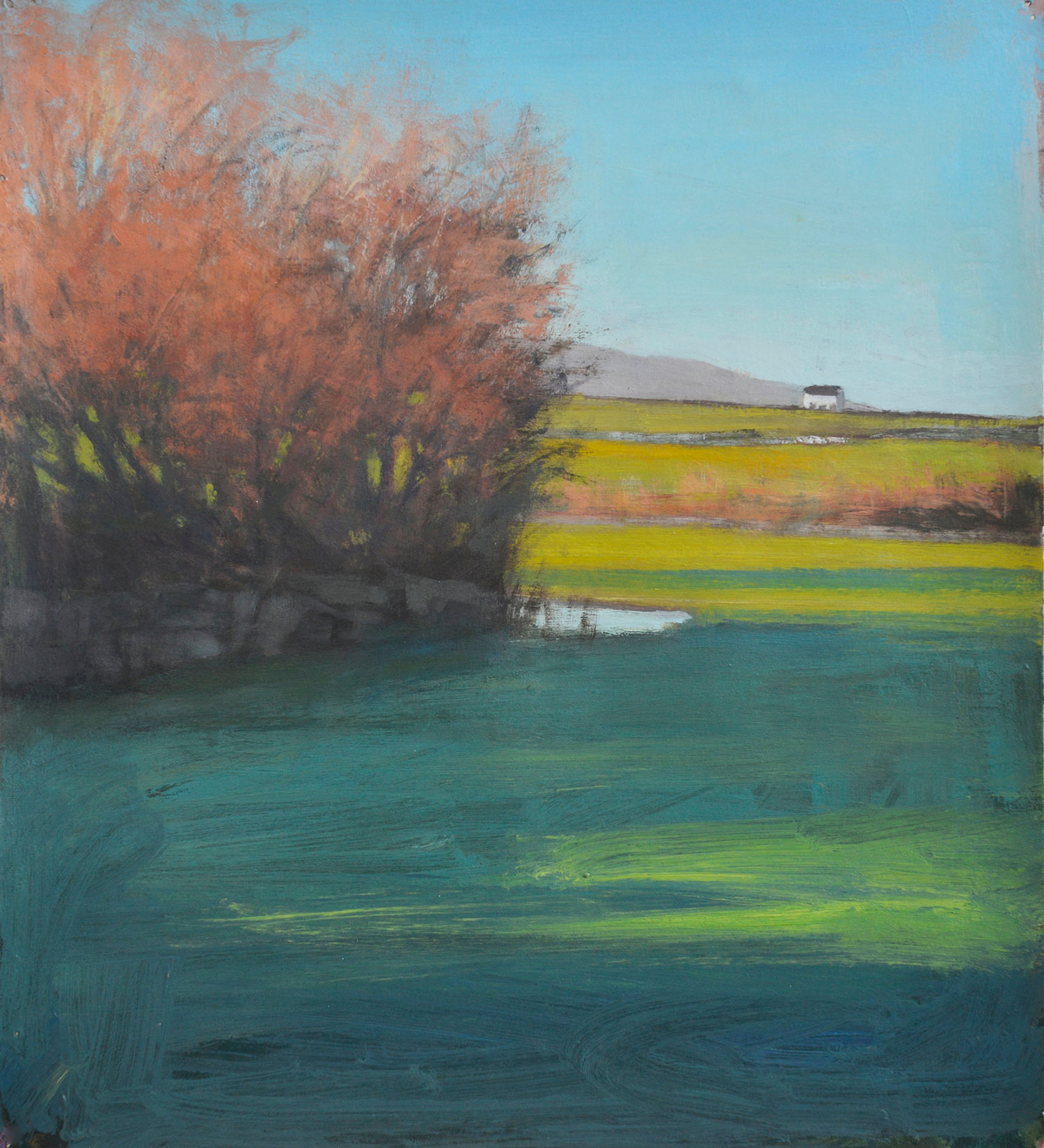 New Quay Fields (sold)