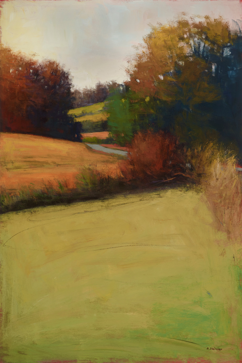 NC Hill Shadows (sold)