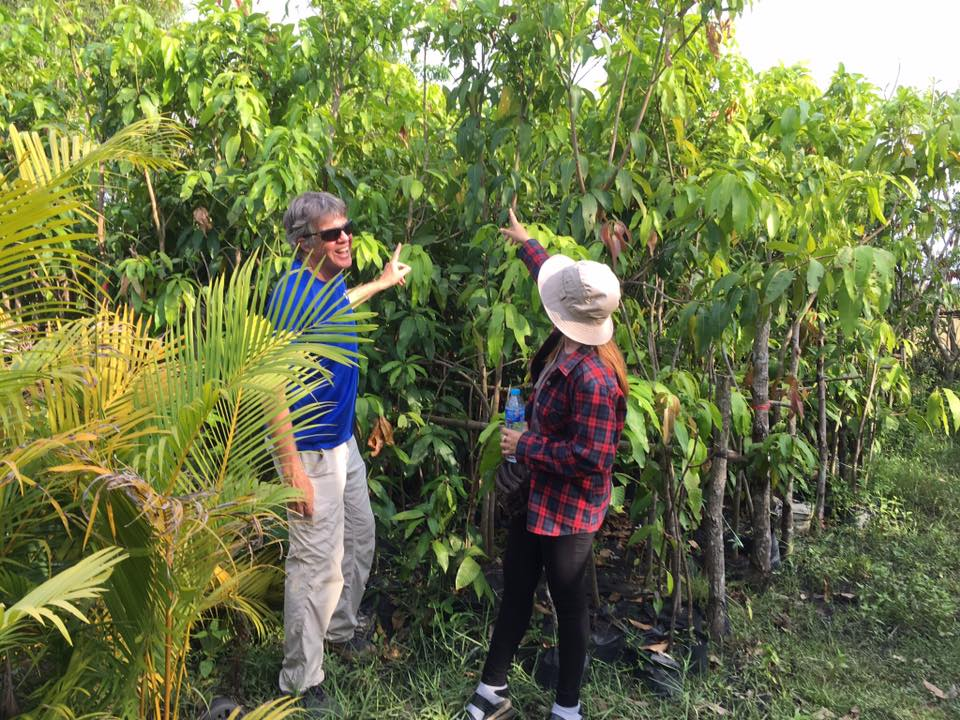 Buying Mango Trees To Be Planted By School