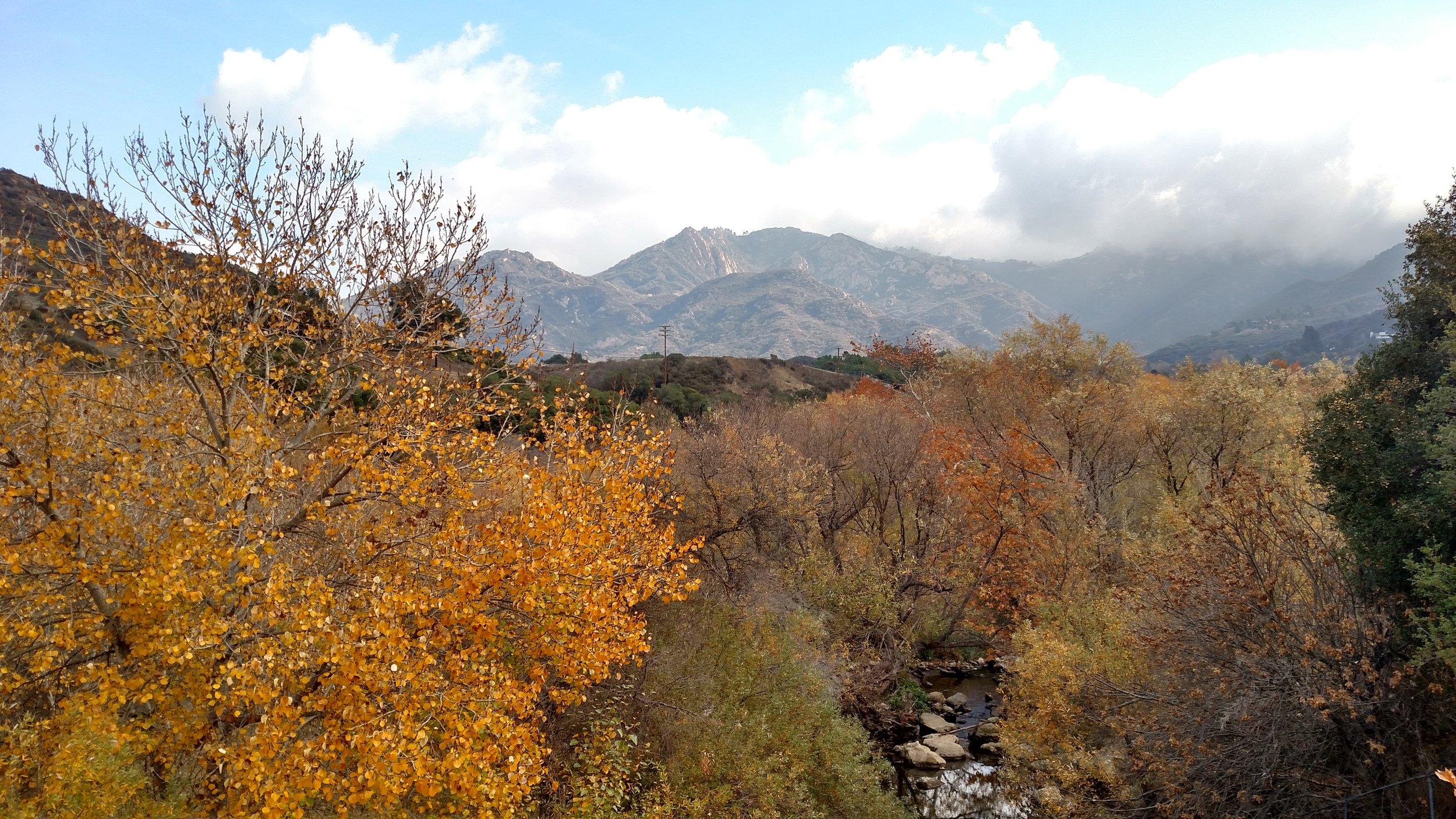 Photo by Micah Tasaka at Malibu Creek State Park, Los Angeles, CA