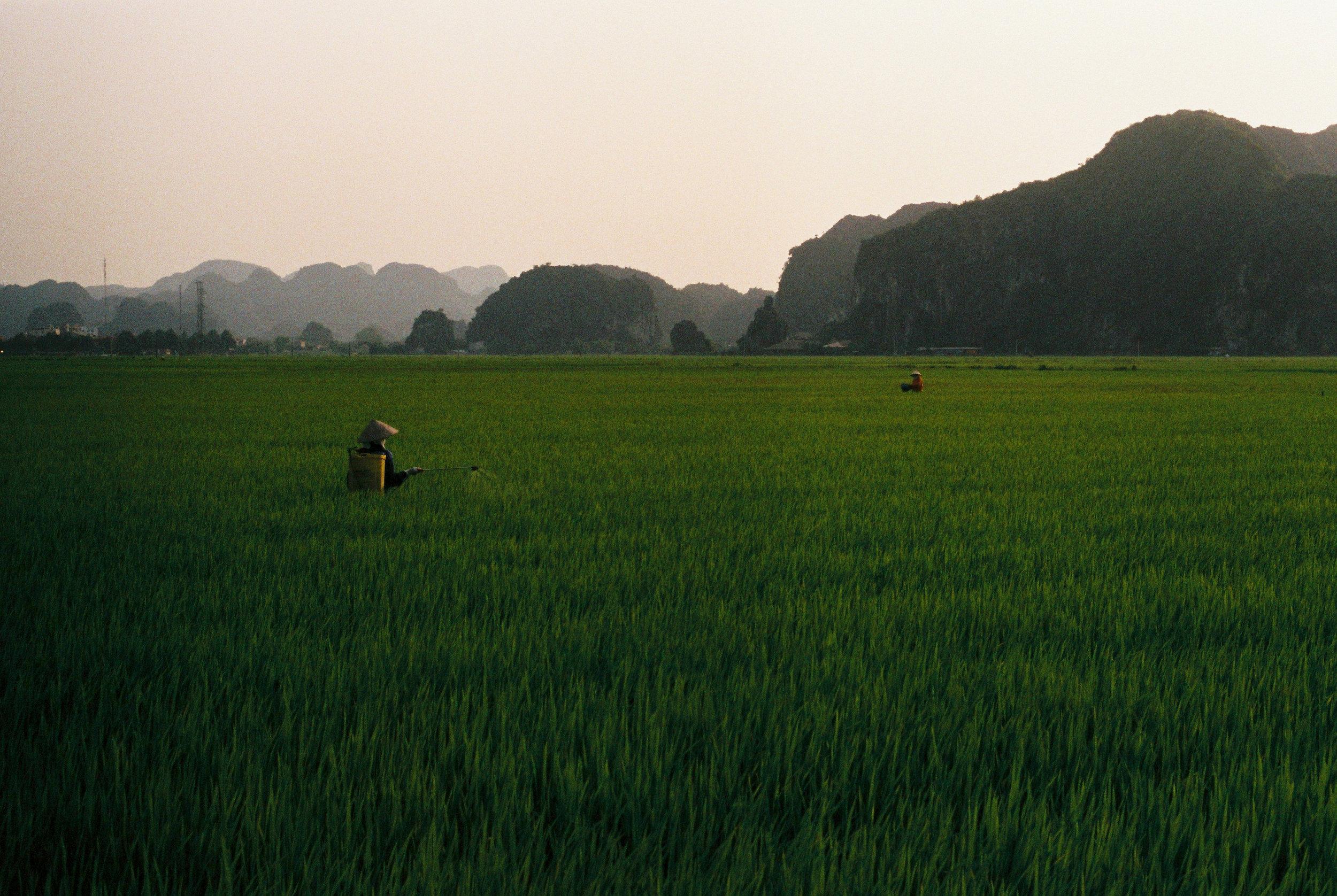 Trip in Asia-394-2.jpg