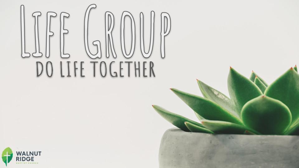 Life Group Option 1.jpg