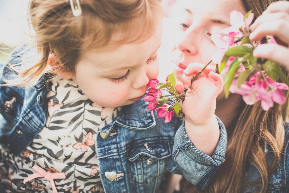 Denver+family+photographer (8).jpeg