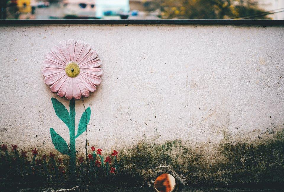 Photo by    Bruno Nascimento    on    Unsplash