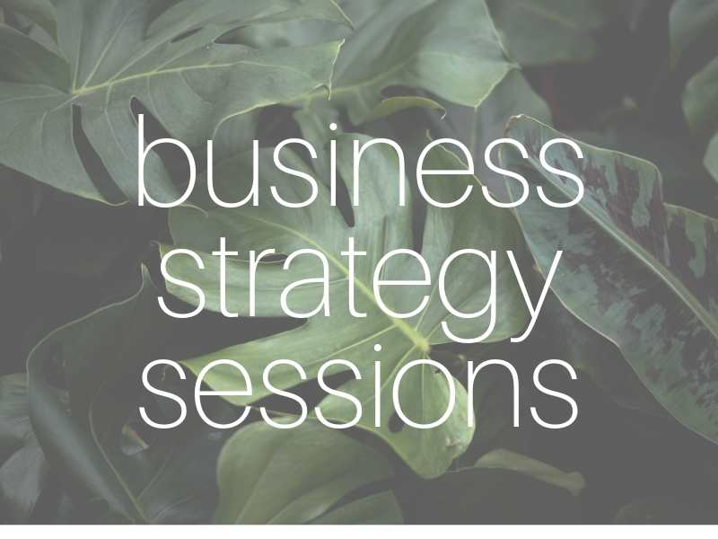 Mentoring sessions for wāhine who have their own creative business and want to take it to the next level.*one off sessions $60*half day session $200*3 month package (one session a week) $500 -