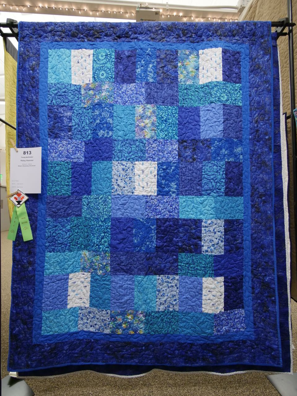 Haley's Dreaming of the Ocean - Young Quiltmaker