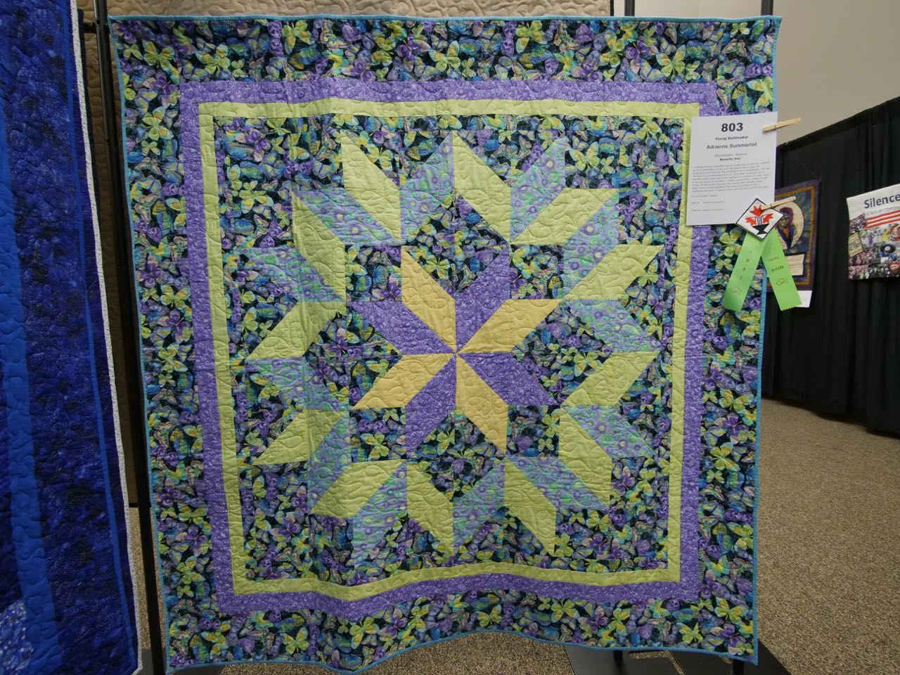 Butterfly Star - Young Quiltmaker