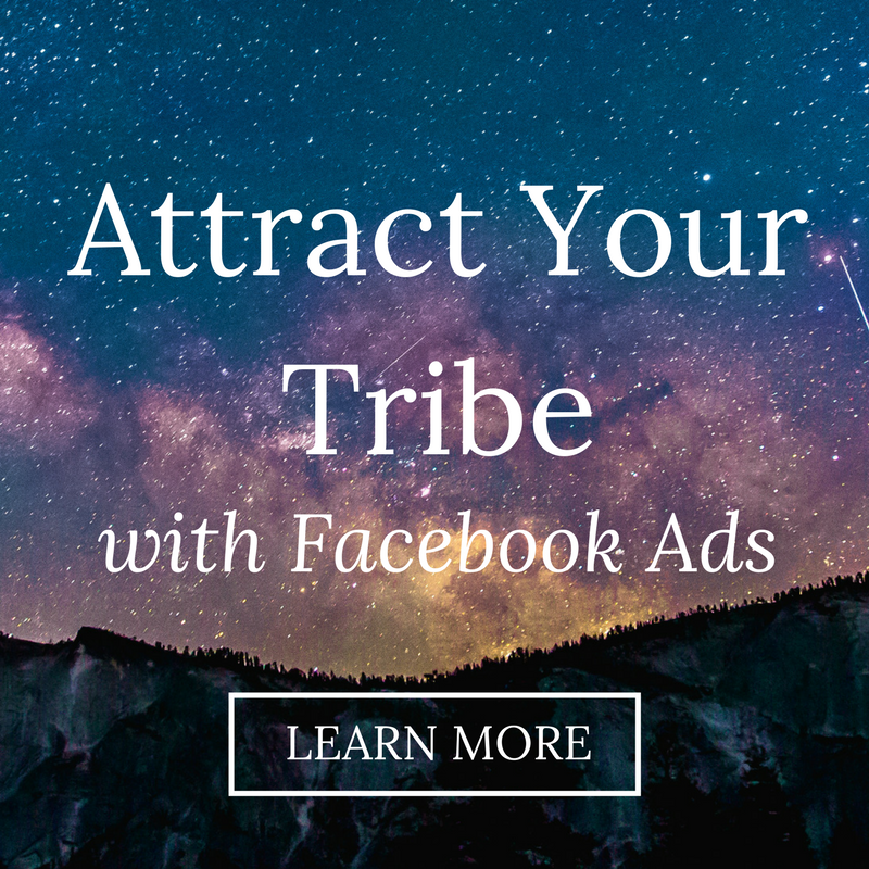 Discover how to use Facebook ads to build your email list and find your dream clients!