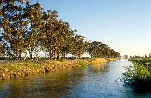Irrigation_Griffith_WillemVanAken.jpg