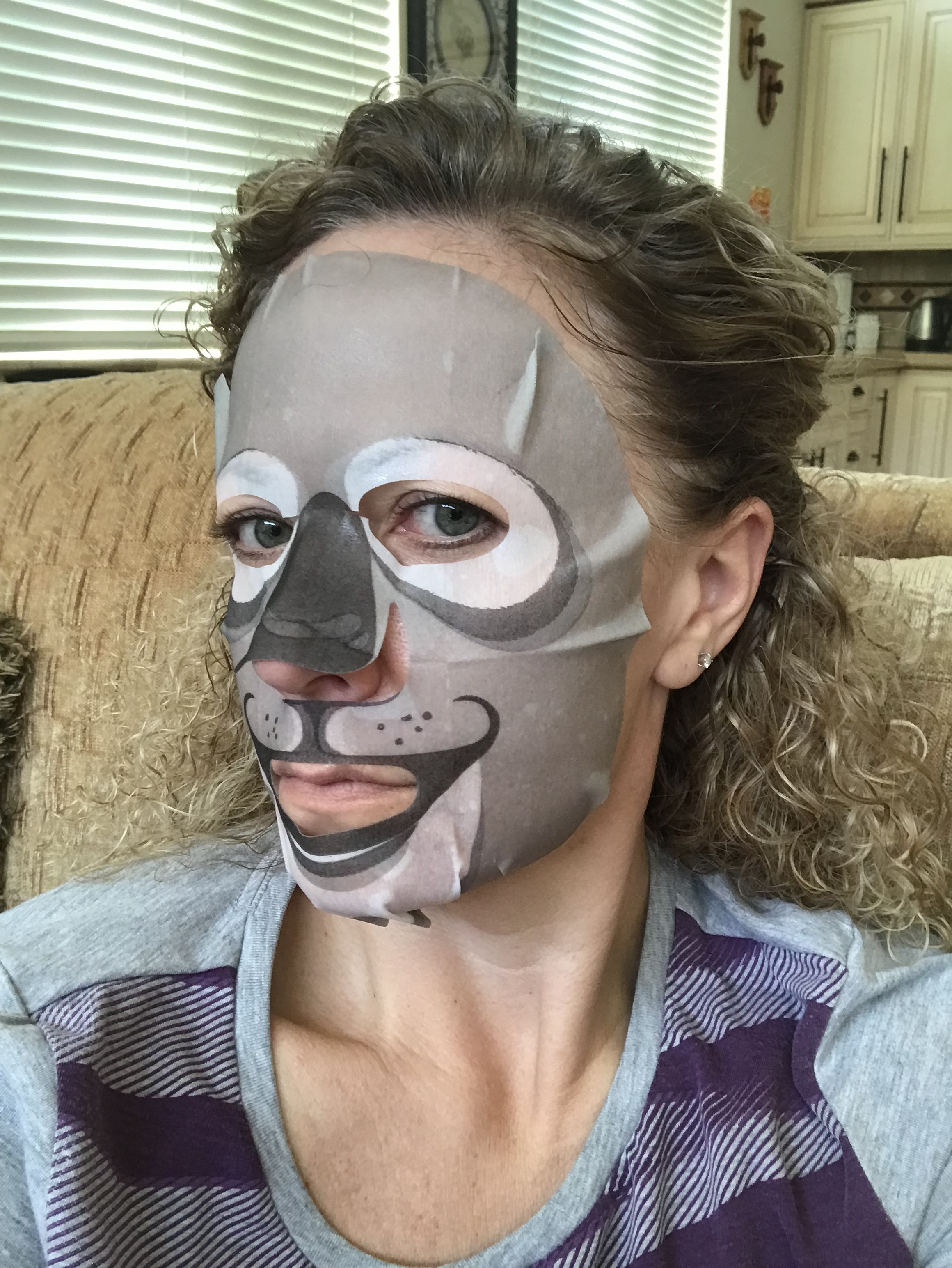 Koala Mask - well I did not know the package was literal but yeah a koala mask.