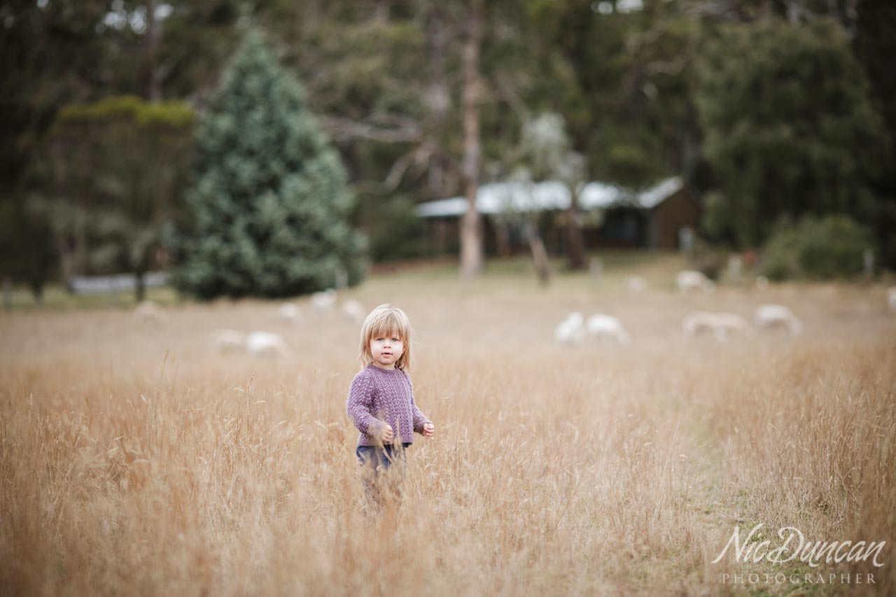 Albany family portrait photography session