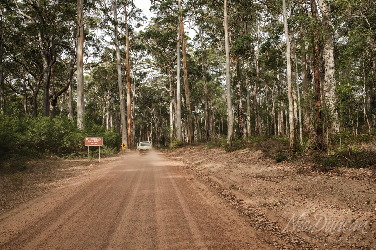 Driving on dirt roads through the forest in Walpole Western Australia