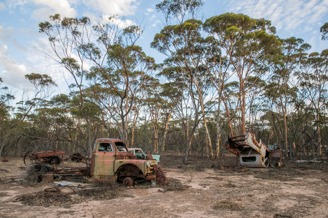 Carnaby's, out the back of Lake Grace - where old cars go to die