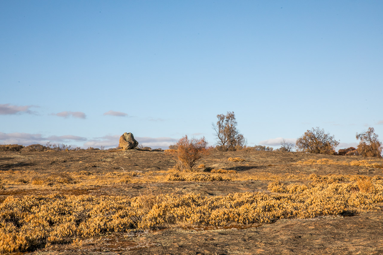 Granite outcrop and large boulder, with native flora in WA's wheatbelt town of Lake Grace