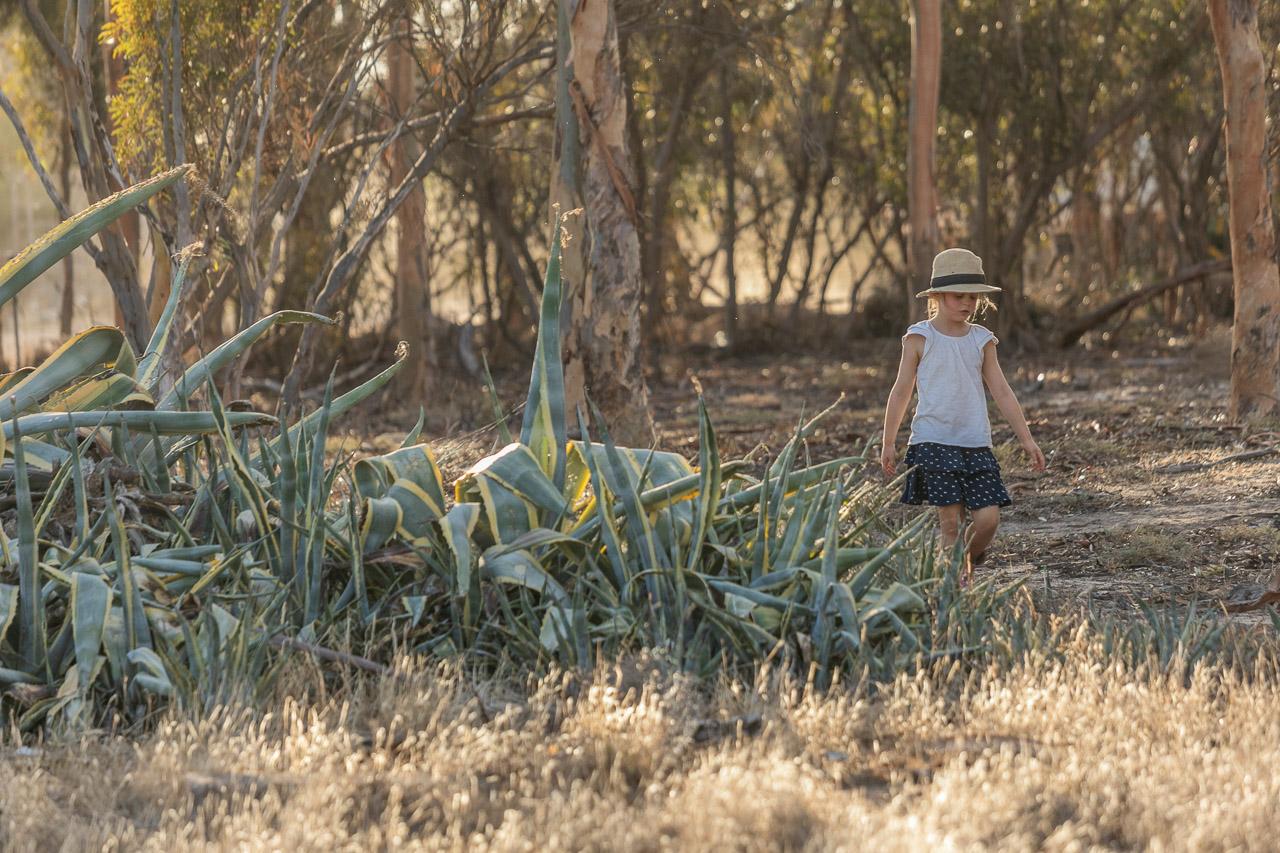 Wheatbelt-family-photos-on-the-farm-23.jpg