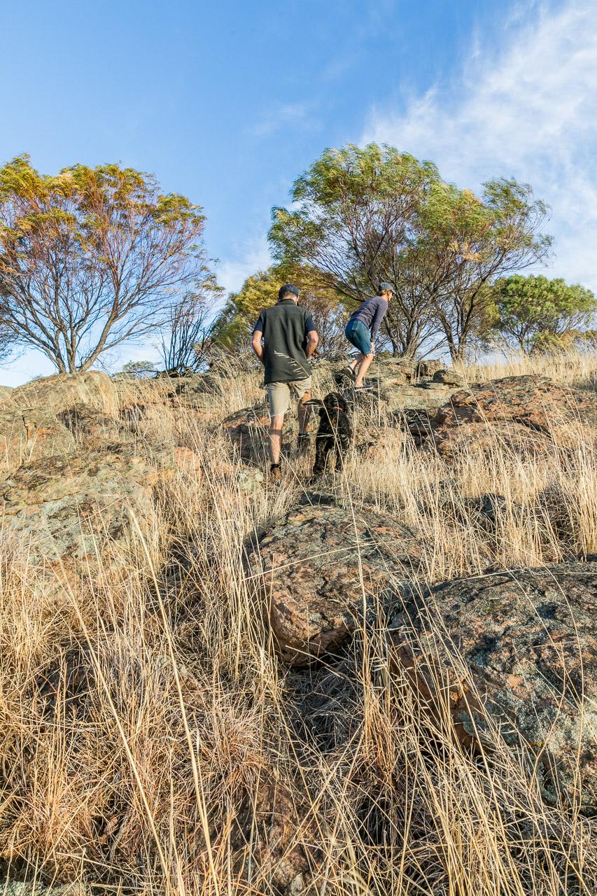 Bruce-Rock-wheatbelt-15.jpg