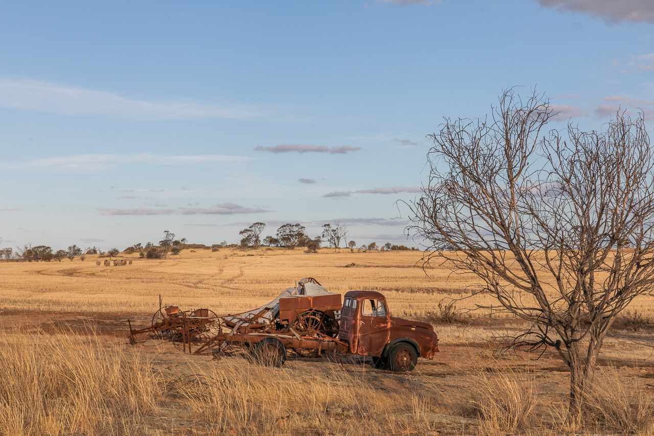 Old rusty farm machinery and vehicles in the Wheatbelt